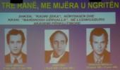 Akademi Përkujtimore në Kichheim-Teck për Vëllezërit Gërvalla dhe Kadri Zeka