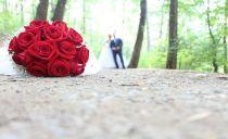 Nuk është thjeshtë një dasmë por një model i rinisë shqiptare